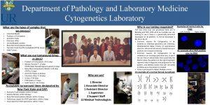 Department of Pathology and Laboratory Medicine Cytogenetics Laboratory