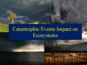 Catastrophic Events Impact on Ecosystems Hurricanes Hurricanes An