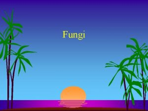 Fungi Fungi l First fungi were probably flagellated