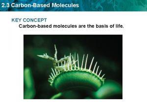 2 3 CarbonBased Molecules KEY CONCEPT Carbonbased molecules