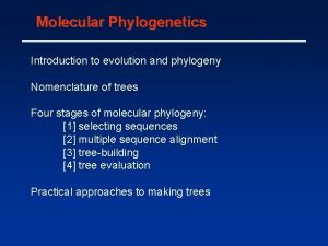 Molecular Phylogenetics Introduction to evolution and phylogeny Nomenclature