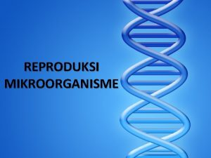 REPRODUKSI MIKROORGANISME PENDAHULUAN Reproduksi mikroorganisme ialah perkembangbiakan mikroorganisme