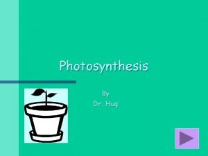 Photosynthesis By Dr Huq What Is Photosynthesis Photosynthesis