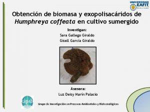 Obtencin de biomasa y exopolisacridos de Humphreya coffeata