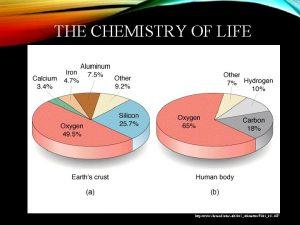 THE CHEMISTRY OF LIFE http www chem ufl
