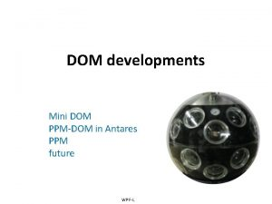 DOM developments Mini DOM PPMDOM in Antares PPM