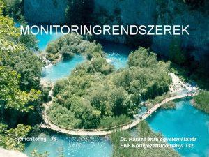 MONITORINGRENDSZEREK Biomonitoring3 Dr Krsz Imre egyetemi tanr EKF