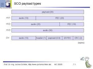 SCO payload types payload 30 HV 1 audio