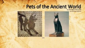 Pets of the Ancient World by Brendan Mc