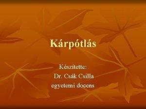 Krptls Ksztette Dr Csk Csilla egyetemi docens KRPTLS