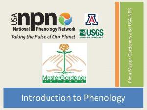 Pima Master Gardeners and USANPN Tucson Phenology Monitoring