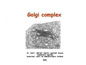 Golgi complex Dr habil Khidai Lszl egyetemi docens