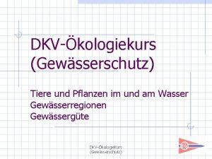 DKVkologiekurs Gewsserschutz Tiere und Pflanzen im und am