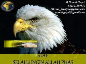 M Hamid Gozali 081321309850 ikhwantarbiyahplasa com hamid gozaligmail