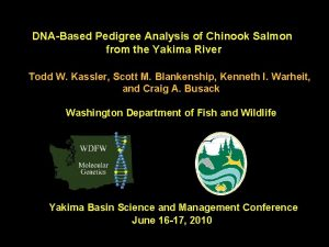 DNABased Pedigree Analysis of Chinook Salmon from the