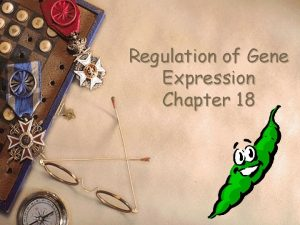 Regulation of Gene Expression Chapter 18 Gene expression