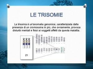 LE TRISOMIE La trisomia unanomalia genomica caratterizzata dalla