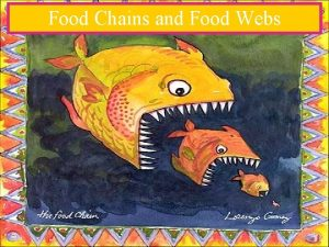 Food Chains and Food Webs A description of