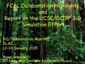 FCAL Collaboration Highlights and Report on the UCSCSCIPP