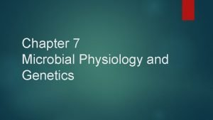 Chapter 7 Microbial Physiology and Genetics Microbial Physiology