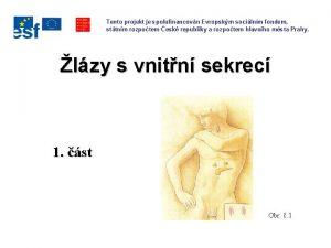 Tento projekt je spolufinancovn Evropskm socilnm fondem sttnm