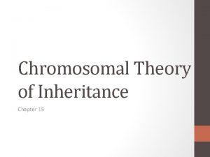 Chromosomal Theory of Inheritance Chapter 15 Mendelian inheritance