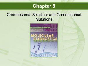 Chapter 8 Chromosomal Structure and Chromosomal Mutations Objectives