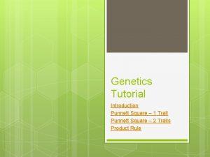 Genetics Tutorial Introduction Punnett Square 1 Trait Punnett