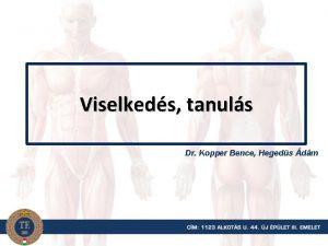 Viselkeds tanuls Dr Kopper Bence Hegeds dm Ajnlott