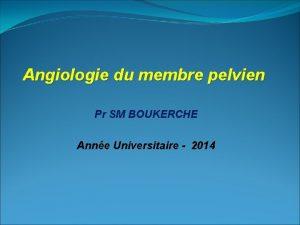 Angiologie du membre pelvien Pr SM BOUKERCHE Anne