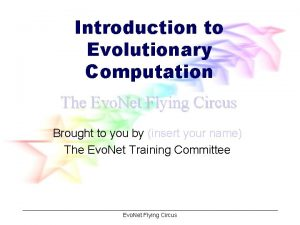 Introduction to Evolutionary Computation The Evo Net Flying