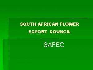 SOUTH AFRICAN FLOWER EXPORT COUNCIL SAFEC SAFEC South