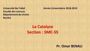 Universit Ibn Tofail Anne Universitaire 2018 2019 Facult