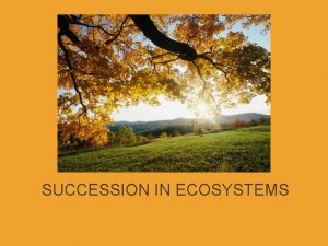 SUCCESSION IN ECOSYSTEMS SUCCESSION defn a series of