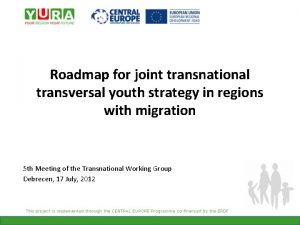 Roadmap for joint transnational transversal youth strategy in