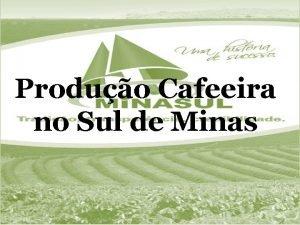 Produo Cafeeira no Sul de Minas SUL DE