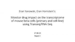 Eran Yanowski Eran Hornsteins Monitor drug impact on