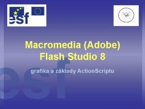 Macromedia Adobe Flash Studio 8 grafika a zklady