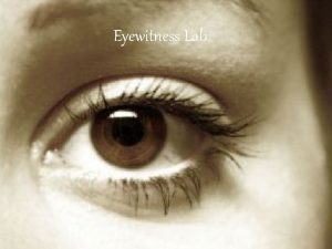 Eyewitness Lab You will have 15 seconds to