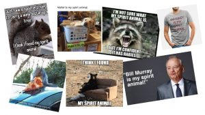 Spirit Animals and other cultural appropriation practices All