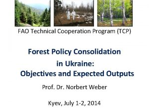 FAO Technical Cooperation Program TCP Forest Policy Consolidation