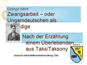 Gyngyi Blint Zwangsarbeit oder Ungarndeutschen als Schuldige Nach