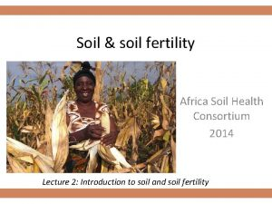 Soil soil fertility Africa Soil Health Consortium 2014