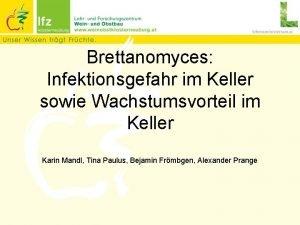 Brettanomyces Infektionsgefahr im Keller sowie Wachstumsvorteil im Keller