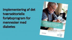 Implementering af det tvrsektorielle forlbsprogram for mennesker med