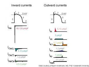 Inward currents 1 2 0 INa Outward currents