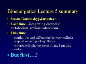 Bioenergetics Lecture 5 summary Susan Kaminskyjusask ca Last