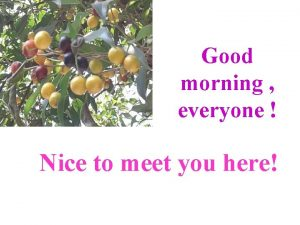 Good morning everyone Nice to meet you here