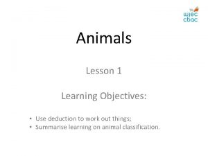 Animals Lesson 1 Learning Objectives Use deduction to