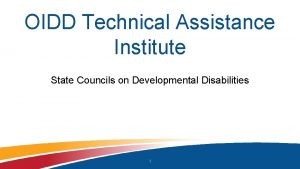OIDD Technical Assistance Institute State Councils on Developmental